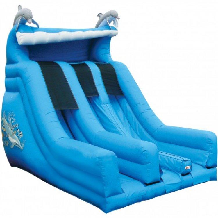 Dolphin Dry Slide